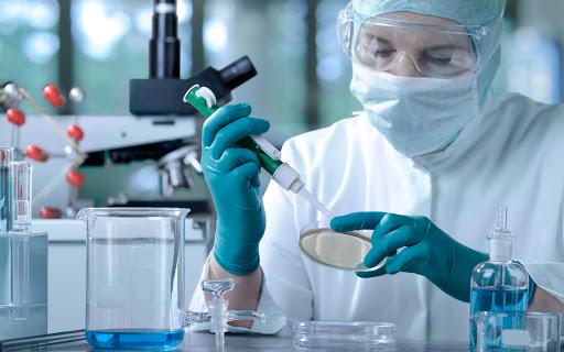 Các trường đào tạo ngành hóa Dược